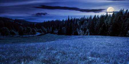 mountainous countryside panorama at night. trees on the meadow along the road. coniferous forest on the hills in full moon light. dark mysterious scenery with clouds on the sky in summer