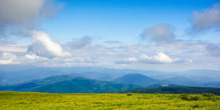 mountain meadow in the afternoon light. beautiful landscape with clouds above horizon. wonderful nature background.