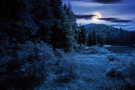 lake of synevyr national park at night. beautiful summer scenery of carpathian mountains in full moon light. popular travel destinations of ukraine. mysterious environment among coniferous forest