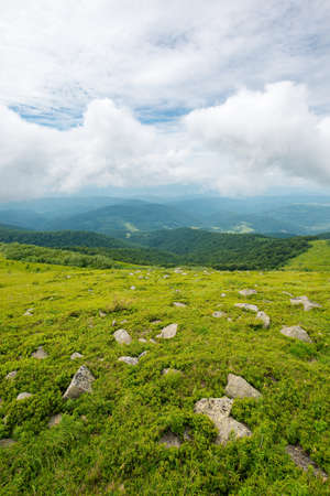 summer nature landscape. grassy meadow with stones on the hill in mountainous scenery beneath a cloudy sky. travel back country concept