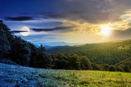 time change above countryside landscape. carpathian mountains beneath a sky with sun and moon above horizon. green hills and meadows in twilight. trees on the hill