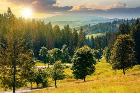 mountainous countryside landscape at sunset. trees on the meadow along the road. coniferous forest on the hills in evening light. bright sunny atfernoon scenery with clouds on the sky in summertime Stock Photo