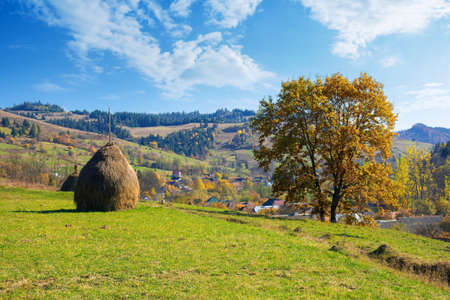 tree and haystack in fall foliage on the hill. autumnal rural scenery on a sunny day. village in the distant valley Stock Photo
