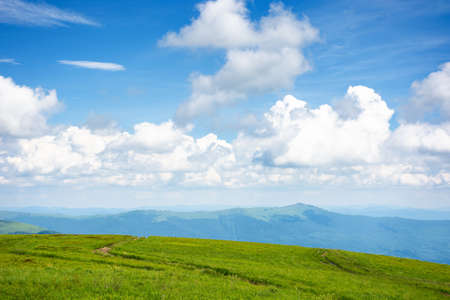 idyllic summer landscape. grassy meadow and high peak in the distance. sunny weather with fluffy clouds on the blue sky. green and blue color in nature
