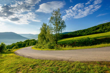 country road down the hill. beautiful travel background. sunny morning weather in mountains. trees along the path Stock Photo