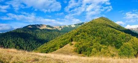 rural landscape in evening light. beautiful countryside panorama of carpathian mountains. forest and meadows on the hills. september blue sky with fluffy clouds above the ridge Stock Photo