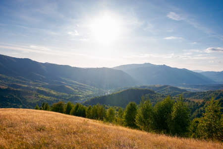 autumnal landscape of carpathian countryside. early autumn season in mountains. trees on the grassy hills rolling in to the distant valley. beautiful scenery on a warm sunny evening with clouds on the skyе Stock Photo
