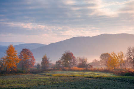 foggy rural landscape at sunrise. beautiful mountainous countryside in late autumn season. empty fields. trees in red and orange foliage. hazy atmosphere Stock Photo