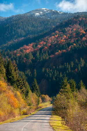 countryside road in mountains. beautiful autumn landscape on a bright sunny morning. trees in colorful foliage along the way. fluffy clouds on the sky above the distant peak. travel back country concept