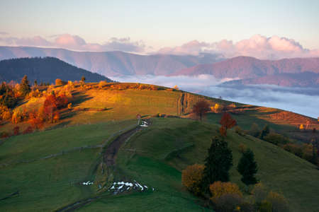 mountainous rural landscape at sunrise. fields and pastures on rolling hill in morning light. cloud inversion in the distant valley. wonderful countryside scenery in autumn season