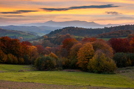 countryside mountain scenery at dusk. beautiful rural landscape in autumn. fields and meadow on rolling hills in evening light. trees in colorful foliage. ridge with high peak in the distance