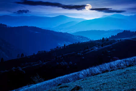 mountainous countryside landscape at night. grassy meadows and trees on hills rolling in to the distant ridge in full moon light Stock Photo