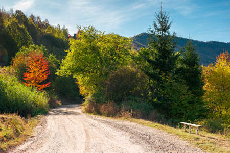 country gravel road in apuseni mountains, cluj country, romania. sunny autumn scenery in morning light. blue sky with clouds Stock Photo