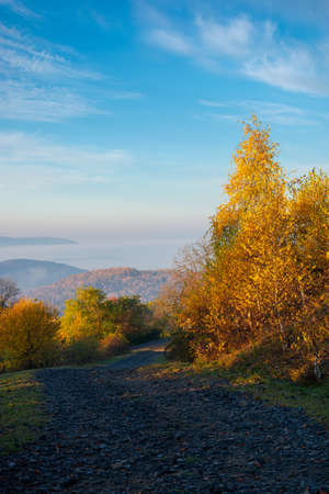autumnal countryside of carpathian mountains. road in the top of a hill. trees in bright yellow foliage along the way in morning light. foggy valley in the distance. sunny weather with clouds on the sky Stock Photo