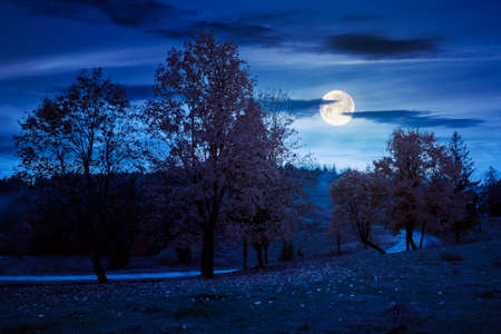 autumn countryside scenery in mountains at night. trees in colorful foliage by the road in full moon light. serpentine winding through hills and forest. rainy weather with dramatic sky