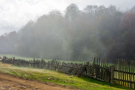 wooden fence on the field. rural landscape on a foggy morning in autumn. misty weather with overcast sky. trees in colorful foliage. Stock Photo
