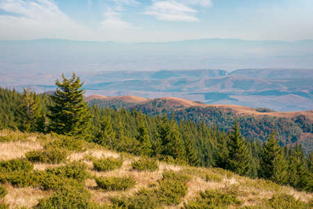 mountain landscape with forested hill. bright sunny afternoon autumn weather. arieseni mountains of romania. travel back country concept Stock Photo