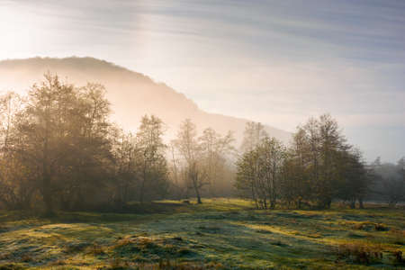 countryside scenery at sunrise. fog glowing in morning light above the forest on the grassy meadow. magical autumn landscape in mountains beneath a blue sky with clouds