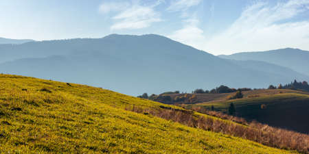 mountainous countryside landscape in autumn. grassy meadows and trees in colorful foliage on hills rolling in to the distant ridge. sunny afternoon weather Stock Photo