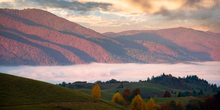 mountain landscape in autumn at sunrise. view from the top of a hill in to the distant valley full of fog. beautiful nature scenery with forested ridge in morning light