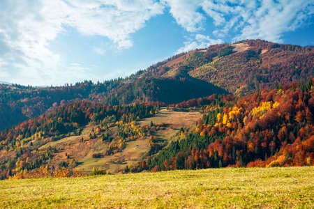 mountain landscape in autumn. wonderful countryside with trees in colorful foliage and grassy meadows. sunny nature scenery with fluffy clouds on the sky Stock Photo