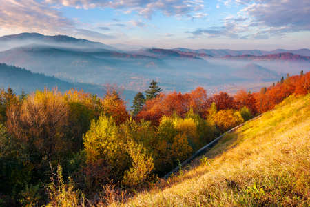 mountainous countryside in autumn at sunrise. wonderful sunny nature scenery with fog in rural valley. gorgeous landscape observed from the top of a hill with trees in colorful foliage Stock Photo