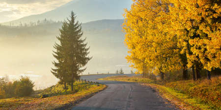 countryside mountain road at sunset. trees in colorful foliage along serpentine. beautiful scenery in evening light. fog of haze in the distant valley