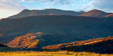 mountain landscape in autumn at sunset. beautiful nature scenery with forested hill and high peak in the distance. grassy meadow glowing in evening light.wonderful weather with fluffy clouds