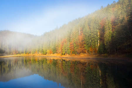 morning landscape at the mountain lake. beautiful autumnal nature scenery with fog. coniferous forest on the shore. synevyr national park, ukraine Stock Photo