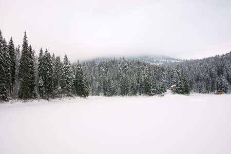 winter scenery in mountains. gloomy landscape with spruce forest on a cloudy day. frozen lake covered with snow. synevyr national park, ukraine Stock Photo