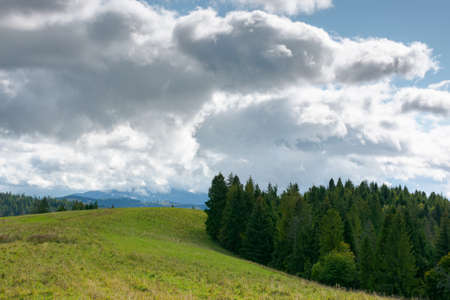 mountain landscape in early autumn. trees and meadows on rolling hill in dappled light. sunny nature scenery with cloudy sky on a sunny and windy day Stock Photo