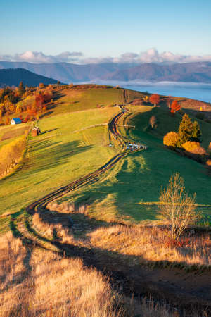 carpathian rural landscape at sunrise. trees in colorful foliage on grassy hills. dirt road through pasture,  wooden fence along the way. beautiful mountain scenery in autumn. bright sunny weather Stock Photo