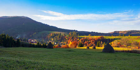 rural landscape in mountains. grassy meadows with high stacks on the rolling hills. trees in colorful foliage. sunny autumn afternoon with clouds on the sky Stock Photo