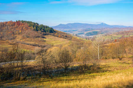 countryside mountain landscape in autumn. trees in colorful foliage on hills rolling in to the distant ridge. beautiful sunny morning in carpathians