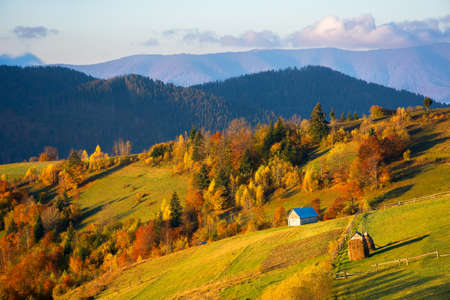 rural landscape of carpathian mountains at sunrise. trees in fall foliage on grassy rolling hills. clouds on the sky and fog in the distant valley. beautiful countryside scenery in morning light Stock Photo