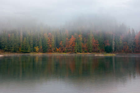 synevyr lake on a foggy morning. beautiful nature scenery of national park in autumn. mysterious atmosphere and cloudy sky. trees in colorful foliage reflecting in the water