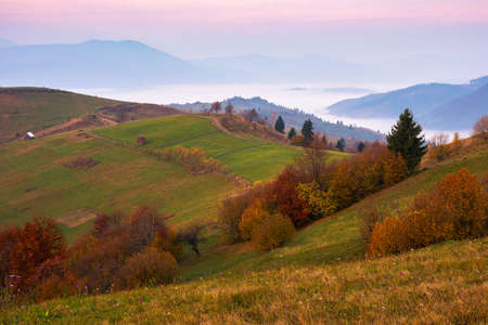 carpathian rural autumn landscape in the morning. mist in the distant valley. trees in colorful foliage on the hills. sunny weather with clouds on the sky