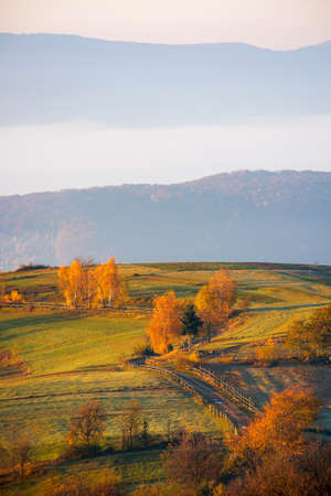mountainous rural landscape at sunrise. trees and fields in morning light. mist in the distant valley