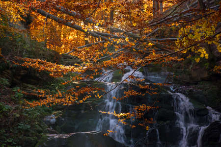 shypot waterfall among the rock in evening light. beautiful autumnal nature scenery in the forest. wet foliage on the stones. popular travel destination of transcarpathia, ukraine Stock Photo
