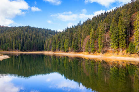 mountain lake among coniferous forest. beautiful autumn landscape with fluffy clouds on the sky. scenery reflecting in the calm water. popular destination of synevyr national park, ukraine