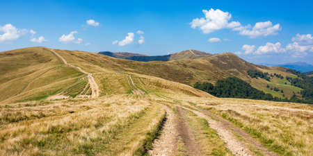 tourist path winding uphill the mountain ridge. carpathian landscape with grassy alpine meadows on a sunny day in early autumn