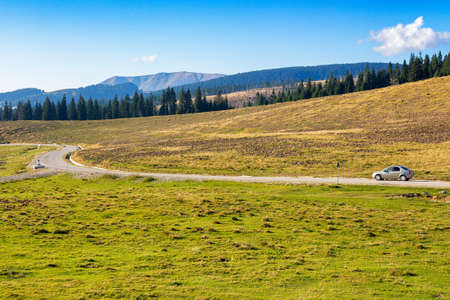 road through apuseni natural park, romania. beautiful countryside landscape in evening light. coniferous forest and grassy meadows on the hills beneath a blue sky with clouds Stock Photo