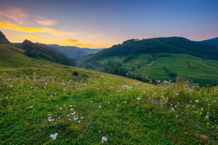 countryside valley scenery at sunrise. beautiful carpathian nature landscape with grassy hills, fields and meadows between forested hills in morning light. small village in the distance