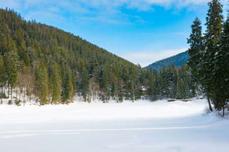 winter landscape in mountains. beautiful scenery with coniferous forest on a blight sunny day. frozen lake covered with snow. synevyr national park, ukraine Stock Photo