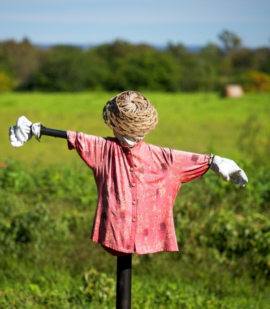 scarecrow with chinese shirt