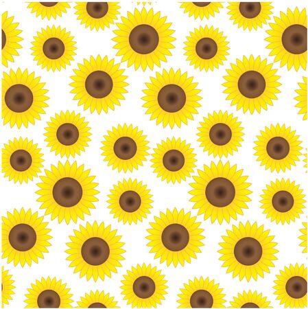 Seamless background with beautiful sunflowers photo