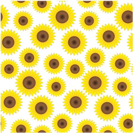 Seamless background with beautiful sunflowers photo