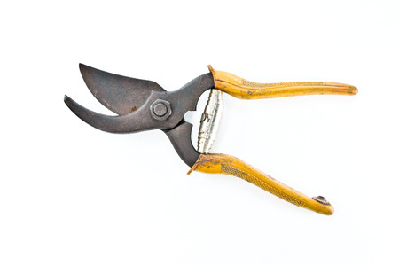 snipping: old pruning shears Stock Photo