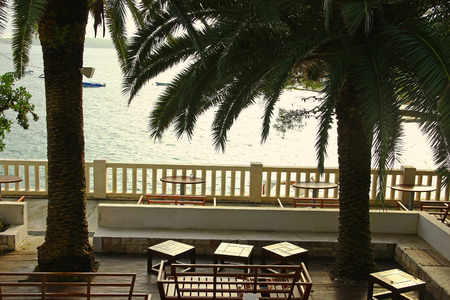 ketch: Beach Bar with Palms
