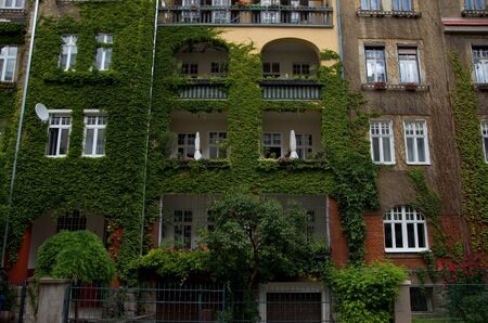 accomodation: Domestic Historical House Covered by Ivy